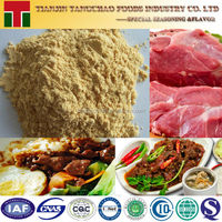 Fried Beef Flavour Powder Instant Noodle Ingredient