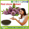 red clover p.e/red clover extract powder Isoflavones/top quality red clover extract