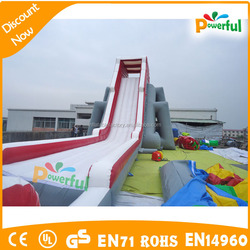 Large Inflatable Wet and Dry Hippo Slide for Amusement Park