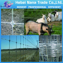 2015 hot sale products!! wire mesh cage / animal fnece