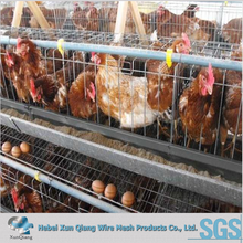 High quality uganda layer farm chicken cage for sale
