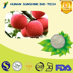 China Manufacture Health Supplements Food Additives Apple Flour