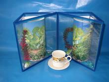 LAYAL new type triangle glass aquarium