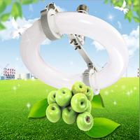 Apple Grow Light