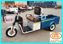 Electric Auto Rickshaw In Bangladesh Dc Motor 48v 120ah,hot cargo motor vehicles/three wheel motorcycles/electric auto rickshaw