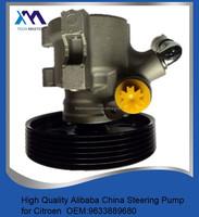 POWER STEERING PUMP for PEUGEOT 306 GTI6 GTI 69633889680 26086656