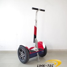 Wind Rover cheap adult electric motorcycle with CE