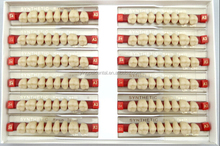 Super Hard Denture Polymerial Material Anterior Resin Teeth