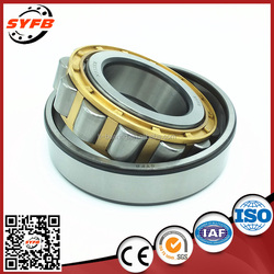 alibaba china large full complement cylindrical roller bearing without inner ring N2207EM
