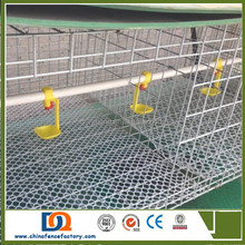 PVC Coated Welded Wire Mesh chicken laying cages