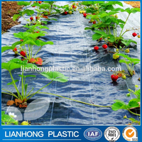 Hot sale weed mat fabric with virgin pp material, high quality landscape fabric, breathable weed control fabric