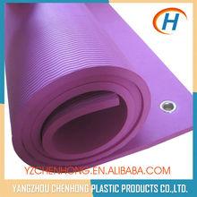 Eco TPE Anti-slip Durable Purple Hole Pilate Mat Yoga Equipment