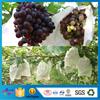 Nonwoven Dot Pattern Fruit Cover Agriculture ShoPPing Bag OEM Fruit Mothproof Bag