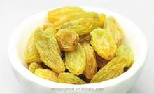 bulk wholesale dried fruit,dried raisin