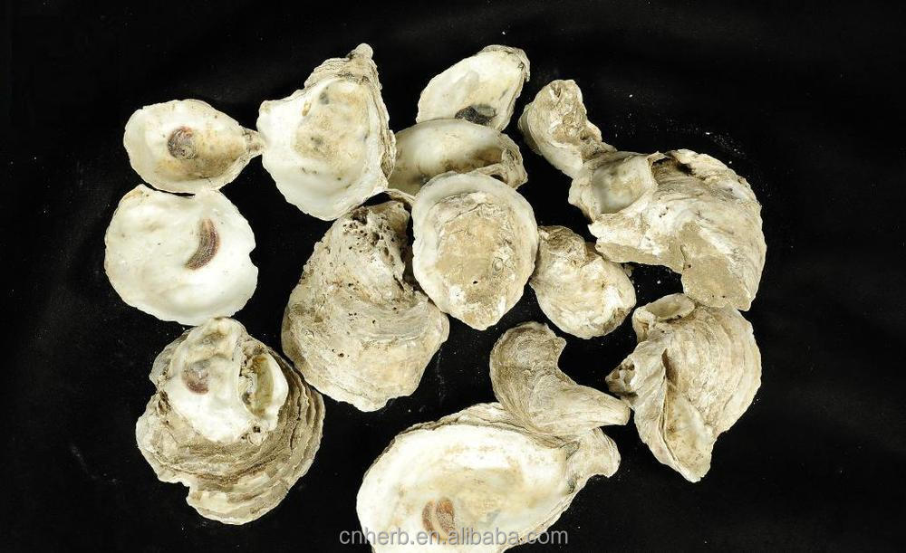 Oyster Shells For Sell Dried Oyster Shell Powder