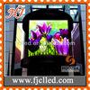 High Quality P10mm xxx China LED Video Display
