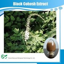 GMP Manufacturer Supply Natural Black Cohosh Extract