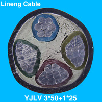 Lineng YJLV 3*50+1*25 Low Voltage 3+1 Core Aluminum Electrical Power Cable