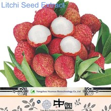 100% Natural Lychee Seed Extract/Plant Extract Powder with Polyphenol