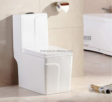 New Design Fashional Sanitary Ware Siphonic One Piece Dual Flush Toilet