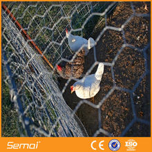 Hot Sale!!! Green PVC Coated hexagonal galvanized fence wire mesh(ISO9001;MANUFACTURER)