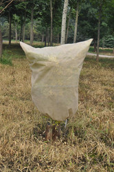 [FACTORY]china supplier High quality pp nonwoven fabric for plant protect used in agriculture