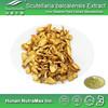Radix Scutellariae Extract,Radix Scutellariae Extract Powder,Radix Scutellariae Extract Manufacturer