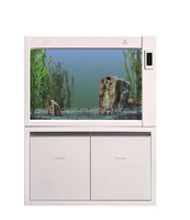 Best Seller Cleair Glass Wall Aquarium DGZ with LCD and Arcrylic decoration