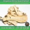 China Manufacturer Angelica Dong Quai Extract , Angelica Dong Quai Extract Powder , Angelica Dong Quai Powder