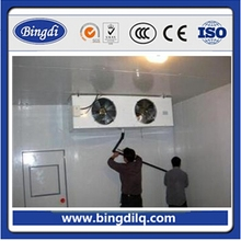 r404a refrigerator cold storage room build price
