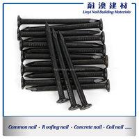 Black Coating Harden 60c Steel Concrete Nails