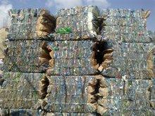 Scrap PET bottles
