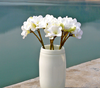 New products home decor artificial foam plumeria flowers
