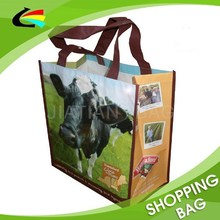 Non Woven Laminated Eco Shopping Bag for Supermarket