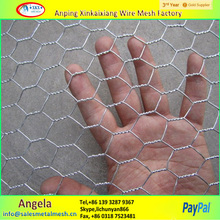 PVC Coated and Galvanized Hexagonal Wire Mesh/Anping Hexagonal Mesh/Chicken Wire Mesh
