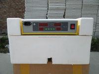 Transparent Cheap Automatic 48 Eggs Solar Chicken Incubator Prices WQ-48