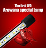 Arowana dedicated LED &Aquarium lighting