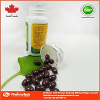 GMP/BRC/Halal Red Korean Ginseng Extract food supplement