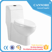 Siphonic One Piece Cheap Ceramic Bathroom Wc Toilet