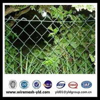 decoration and Durable Green chain link Fencing wire mesh of rolls for sales