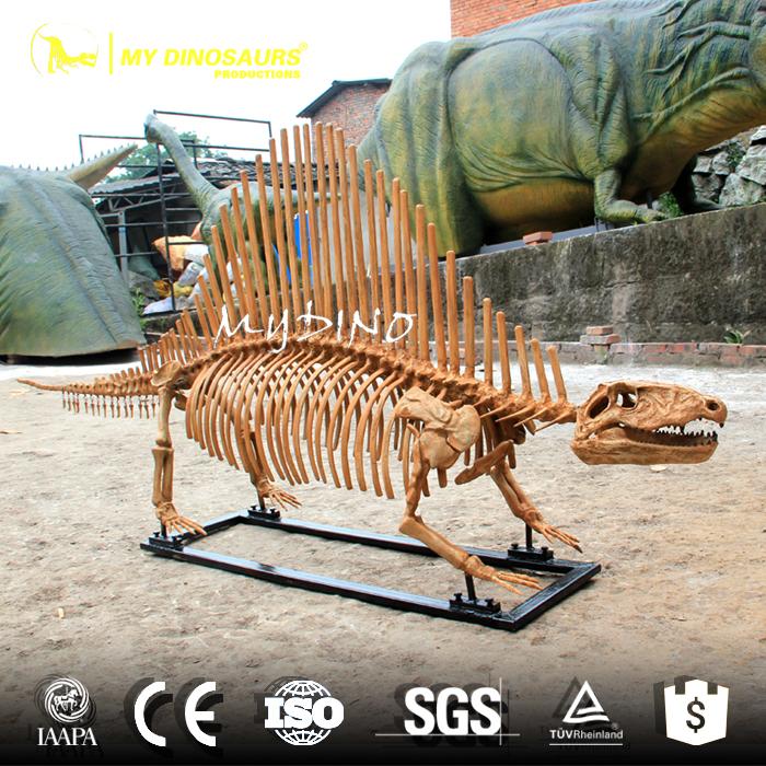 Dimetrodon Skeleton (2).jpg