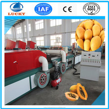 China Industrial automatic equipment hot temperature mango Ironing Machine