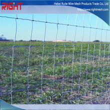 Quality Products Tight Lock Mesh Deer Fence with Low Price