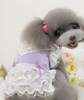 Wholesale Dog Summer Lovly Dress Pet Pleated Dress Beautiful Pet Lovely Dress
