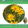 Pure Arnica Plant Extract Powder 4:1~20:1
