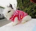 Roupas para animais de estimação para coelhos/atacado de produtos para pet shop/pet acessórios made in china