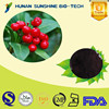 Natural Cranberry Extract 25% Anthocyanidin Cranberry Extract Powder