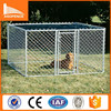 Heavy duty galvanized 10 x 10 dog kennels with top / lagre dog kennels with top