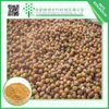 Hot selling health care product Soap Nuts Extract Powder 0.5-3% Saponin