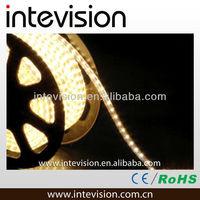220v IP65 5050 2700k warm white led strip lighting